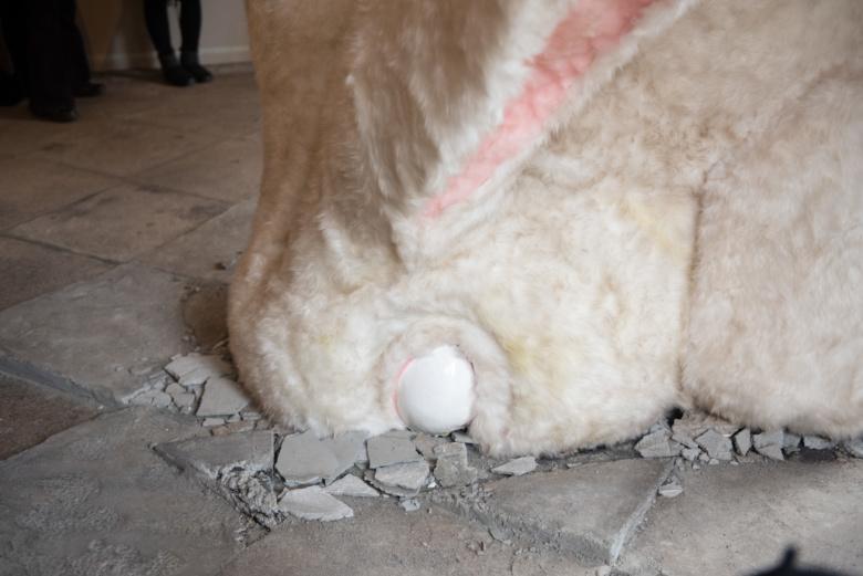 白目ウサギ