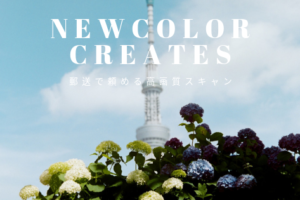 NEWCOLOR CREATES